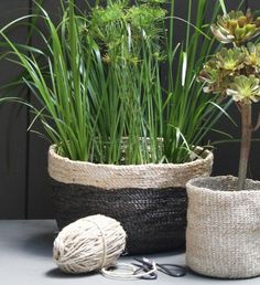 Jute Bowl - Charcoal with Natural Trim - Jute Bowls - Baskets & Storage - The Dharma Door