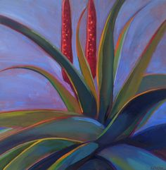 Red Aloe.  Limited Edition prints available at karinshelton.com. Tequila Agave, Downtown Santa Barbara, Limited Edition Prints, Aloe, Succulents, Create, Garden, Paintings, Red