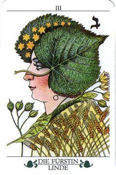 The Princess (The Empress) - Madru Das Baum Tarot Aphrodite, Botanical Illustration, Illustration Art, Online Tarot, Tarot Major Arcana, Oracle Tarot, The Empress, Tarot Spreads, Tarot Decks