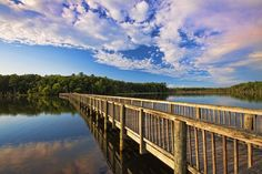 Newport News Park is an 8,000-acre park with two fresh water reservoirs and is one of the largest municipal parks east of the Mississippi.
