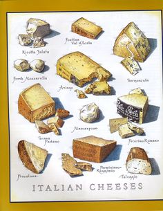 Cook's Illustrated back cover art: Italian Cheeses