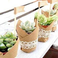Amei essa ideia de lembrancinha: simples baratinha e puro charme né? Quem aí gostaria de ganhar uma lembrancinha como esta? #diy #facavocemesmo #party #gifts #organizesemfrescuras #ficaadica #suculentas