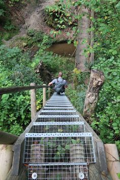 Wandern im Schwarzwald auf sechs Etappen über den Premiumwanderweg Schluchtensteig – Auf einem Top Trails of Germany, geht es 118 km durch Täler und Schluchten des Schwarzwaldes.