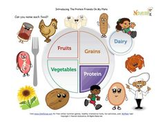 Teach children about foods from the protein group using the new My Plate!