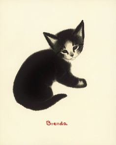 Brenda, Black Cat, From a edition of a charming children's story by Clare Turlay Newberry Crazy Cat Lady, Crazy Cats, Hate Cats, Black Cat Art, Art Graphique, Art Wall Kids, Wall Art, Cat Drawing, Illustrations