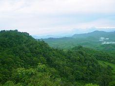 Bosque en las montañas del Norte de Nicaragua
