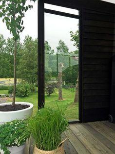 Det er ikke til å tro hvor fin denne hagen ble! Black Pergola, Small Pergola, Metal Pergola, Small Patio, Pergola Ideas For Patio, Backyard Pergola, Backyard Landscaping, Garden Pool, Terrace Garden