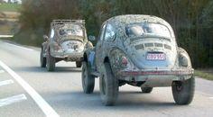A couple more Euro Class 11 Bugs Vw Baja Bug, Volkswagen Germany, Bugs, Vw Dune Buggy, 4x4, Sand Rail, Vw Cars, Beatles, Vw Beetles