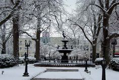Snow On The Square Downtown Bg Ky Bowling Green Fountain Square Western Kentucky University