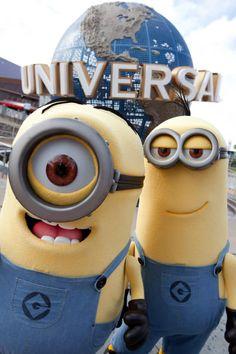 Minions na universal studios
