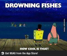 Spongebob Logic - Funny