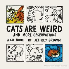 Cats Are Weird: And More Observations - Jeffrey Brown