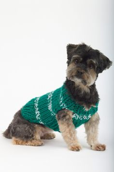Knit The Sports Nut Dog Sweater in your favorite team colors so you and your best friend can match while you watch the game!