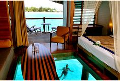 Tahitian overwater bungalow with glass floor. So doing this if I ever have a honeymoon.