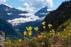 Haystack Butte in Glacier National Park | GI 365