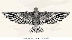 Line art vector illustration - DIY tattoo images diy tattoo images - diy best tattoo images - Sketch of the bird for tattoo. Line art vector illustration DIY tattoo images - Tattoo Sketch Art, Illustration Tattoo, Tattoo Design Drawings, Bird Drawings, Tattoo Designs Men, Tattoo Art, Art Illustrations, Vogel Illustration, Hawk Tattoo