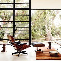 (7) Fancy - Eames Lounge Chair & Ottoman