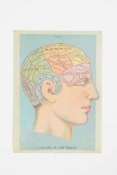 Phrenology Head Poster