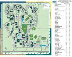 93 Best UNCW Campus images