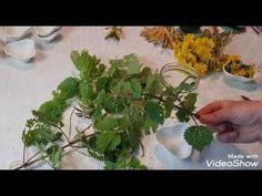 Ulei de urzică. Combaterea tusei. Pancrias. Glanda Teroida. Artrită Reumatoida - YouTube Cancer, Health Fitness, Herbs, Youtube, Plant, Health, Herb, Fitness