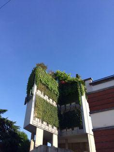 Fuori Salone 2014. Jardim vertical em Ventura-Lambrate.