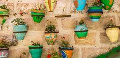 Belle, buone, profumate: le erbe aromatiche sono perfette per un piccolo orto in vaso da coltivare nei mesi invernali. Ecco 7 idee e qualche piccolo consiglio per farle crescere in casa.