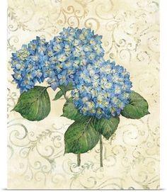 Blue small hydrangea