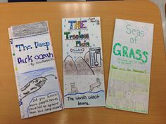 Ecosystems Brochure Research Project - fifth grade Science