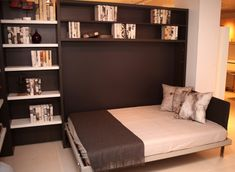 Adam | Resource Furniture | Wall Beds & Murphy Beds $$$ custom made - SHALLOW murphy bed & shelves