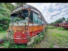 Abandoned street cars and trolleys in a North Carolina forest.