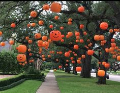 Pumpkin Halloween Decor Ideas for the Thriller Night - Hike n Dip Pumpkin is a major part of Halloween and Fall decoration. Here you will find some of the classiest and most fabulous Pumpkin Halloween Decor Ideas. Retro Halloween, Casa Halloween, Halloween Designs, Halloween 2020, Holidays Halloween, Halloween Pumpkins, Halloween Halloween, Halloween Yard Ideas, Diy Outdoor Halloween Decorations
