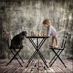 your move small human.