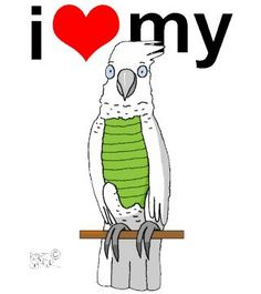 I Love My Naked Parrot parrot. It plucks it;s feathers. Check it out on t-shirts ($20.00) or other cute parrot merchandise. <3   http://www.galloree.com/BirdBreath-I-Love-My-Parrot-Naked--28130.htm
