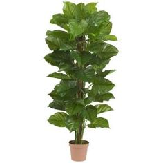Nearly Natural Real Touch 63 in. H Green Large Leaf Philodendron Silk Plant 6594 at The Home Depot - Mobile