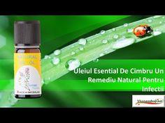 Uleiul de cimbru Voss Bottle, Water Bottle, Natural Oils, Romania, Essential Oils, Youtube, Plant, Water Bottles, Youtubers