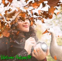 Have fun my GIF Images. Gif Pictures, Fall Pictures, Beautiful Birds, Life Is Beautiful, Summer Gif, Cute Love Memes, Nature Gif, Gif Photo, Good Morning Gif
