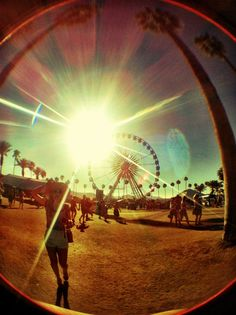 Music Festivals. Coachella. MUSIC.