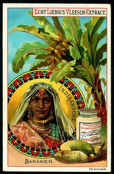 1890. Fruit & National Beauties (Bananas, India) trading card issued by Liebig Extract of Beef Company. S269.