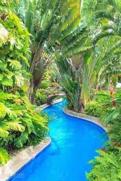 Have you ever thought of leaving your birth country and living your life somewhere on the beach? Perhaps, you love mountain experiences or you just [. Tropical Pool Landscaping, Backyard Pool Designs, Swimming Pools Backyard, Swimming Pool Designs, Vacation Places, Dream Vacations, Lazy River Pool, Luxury Pools, Beautiful Pools