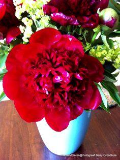 Bloemen gehad omdat ik ziek was. Had flowers because I was sick.