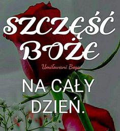 Ich Liebe Dich Mein Schatz Polnisch
