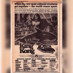 A re-release double feature of King Kong and Orca: The Killer Whale Best Movie Posters, Cool Posters, Horror Posters, Horror Films, Old Movies, Vintage Movies, Classic Monsters, Fantasy Movies, Creature Feature