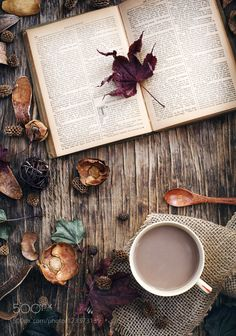 Autumn composition with cup of hot chocolate and book. by anjelagr