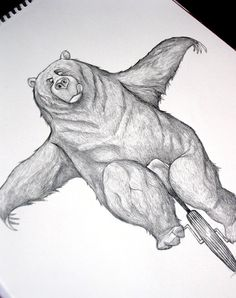 Bears Illustration Book - Dave Mottram - Illustrator
