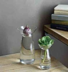 From Japan-based Kinto, a glass bulb vase makes a fashion statement with its removable collar (which acts as a plant support): Photography via Kinto except