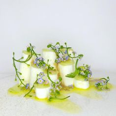 Alexandre Gauthier (La Grenouillère) | Omnivore | OMNIVORE World Tour London at OMNIVORE World Tour London. Archiving Food Photography | Gastronomy