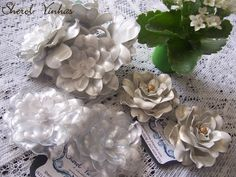 www.sherolvinhas.blogpost.com