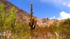 Argentine : Route vers Belén, le paysage désertique s'annonce