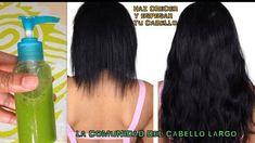 Haz crecer tu cabello largo y espeso y detén la caída con esta poderosa mezcla! - COMUNIDAD DEL CABELLO LARGO - Google+