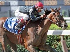 Smuggler(2002)Unbridled- Inside Information By Private Account. 4x5 To Buckpasser, 5x5 To Aspidistra. 9 Starts 5 Wins 2 Seconds 1 Third. $654,352. Won Mother Goose S(G1), CCA Oaks(G1),  U.S. Champion 3 YO Filly In 2005. Died April 16,2015 Following Foaling Complications.: